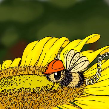A picture of a bee collecting pollen from a flower. The bee is wearing a hat. Any positions we have