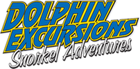 Dolphin Excursions Snorkel Adventures Aloha Later Jenna's The Best!!