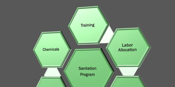 Sanitation Program, Training, Labor Allocation