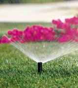 Lawn sprinkler for your lawn and gardens
