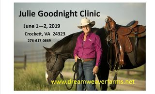 Julie Goodnight is a regular on RFD-TV. She is a favorite clinician known around the world.