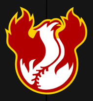 Scottsdale Firebirds Baseball