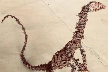 Wire goanna sculpture
