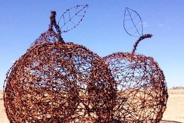 barbed wire fruit sculpture