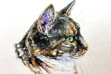 "Watercolor, ""Mittens,"" 8 x 10, by Susan Pettit, commissioned.  Have painted many cats and dogs!"