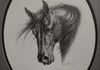 "Pencil, ""Majesty"" my own imagination horsehead, 9 x 12 by Susan Pettit, Private Collection."