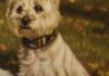 Commissioned, Detail of Pastel Molly's Loves, by Susan Pettit.