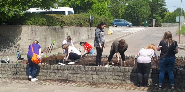 Volunteer gardeners preparing a garden patch for plants and shrubs.