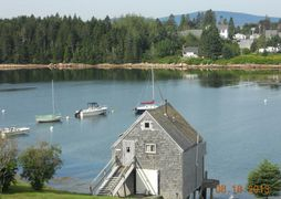Day trips to Campobello Island, Fort Knox, Bar Harbor, Blue Hill, Federal Wildlife Refuge & State Pk
