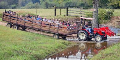 The hayride at Bennett Farms takes you on a fun ride across Snake Creek!