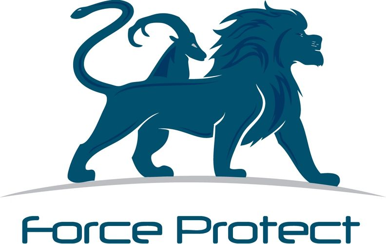 force protect security consultants