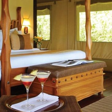 Value Travel and Tours 14-Day Kenya and Tanzania Digital Detox Safari. Perfect for Solo Travelers.