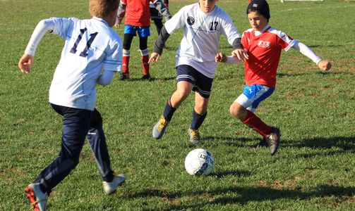 Sunflower Soccer is a not-for-profit organization.