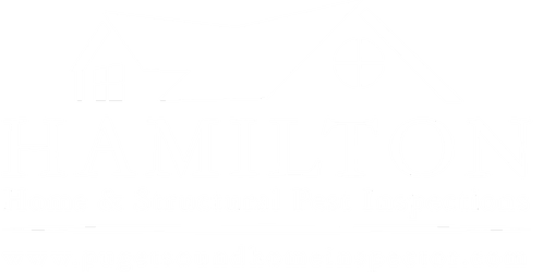 Hamilton Home And Structural Pest Inspections