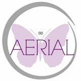 Go Aerial Fitness