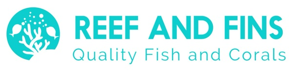 Reef and Fins, an Undine Group Company