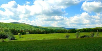 Tennessee Land For Sale Crab Orchard Cumberland County Realtors Real Estate Agents Buy Sell TN 37723