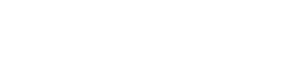 Reeves Information Technology