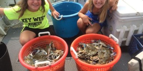 Crabbing - Annapolis fishing charters on board the Down Time