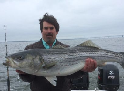 Striped Bass - Down Time Sportfishing Charters on board the Down Time