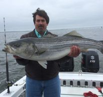Trophy Stripers