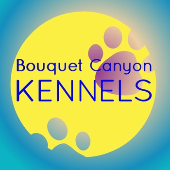 Bouquet Canyon Kennels