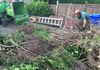 Hedge & Stump Removal - All Waste Removed