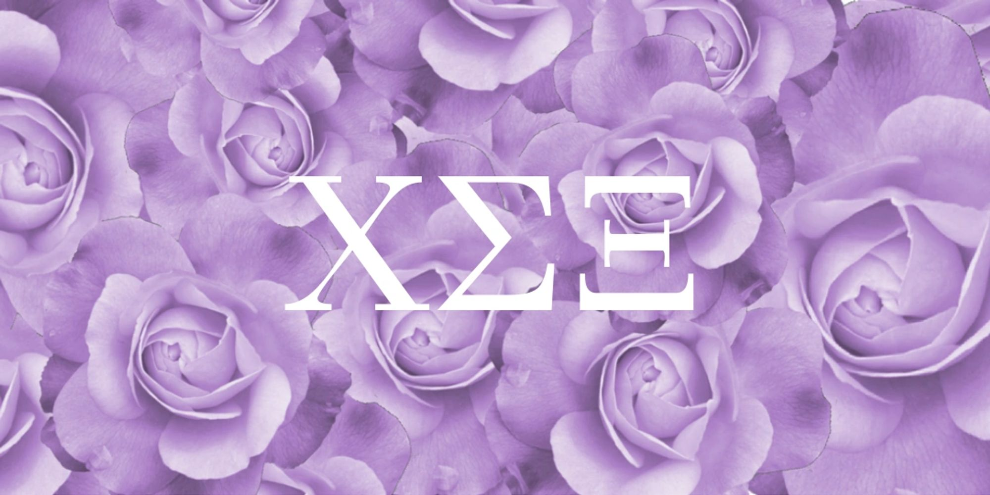 "Purple rose floral background with capital greek letters ""Chi Sigma Xi"" in white."