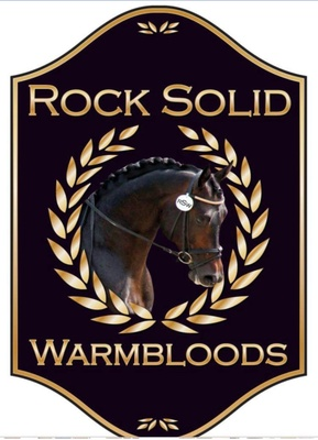 Rock Solid Warmbloods LLC