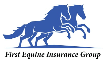 First Equine Insurance Group