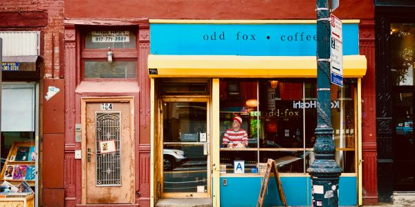 odd fox coffee greenpoint