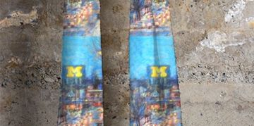University of Michigan art apparel cashmere modal scarf