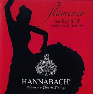 Hannabach Flamenco guitar strings are what Berto Boyd plays concerts and events on