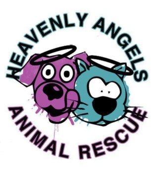 Heavenly Angels Animal Rescue