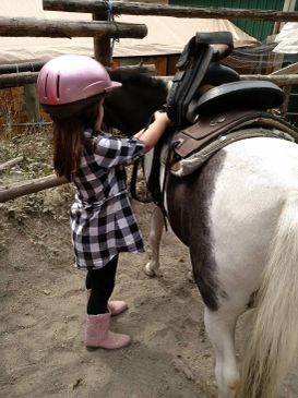 young rider saddling pony