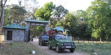 Day tours,Rajaji Tiger Reserve, National Park, Jungle Safari,India ,Haridwar,Rishikesh,Uttarakhand
