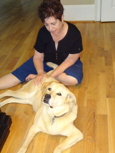 Poor Jack was having severe hip pain. He loved getting Reiki and didn't want me to stop.