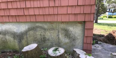 Stump Cluster That was pushing the Foundation of this house and had to be removed. See above photo