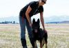 "Lindsay and Cimba(imported German Shepherd) ""I was lucky to have the pleasure of working with this girl"""