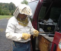 Getting ready for Bees - Animal Management