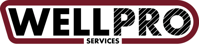 Wellpro Services Pty Ltd