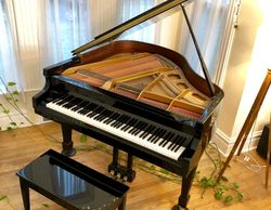 Baby grand piano, acoustic piano, Hammond A101 organ, Leslie cabinet, MIDI controllers