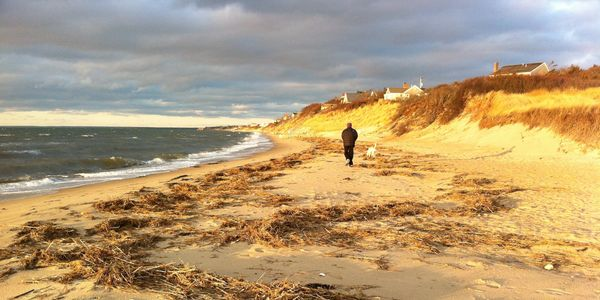 A woman walks her dog on the First Encounter Beach.