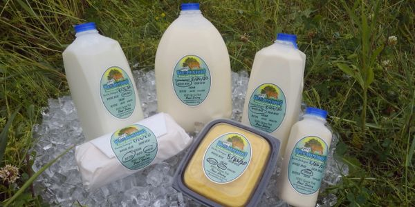 Freshly packaged dairy products Milk Butter Cream herdshare herd share herd-share