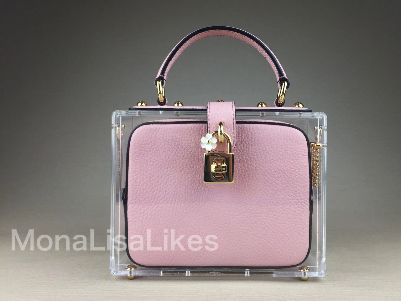 DOLCE & GABBANA plexiglass box bag