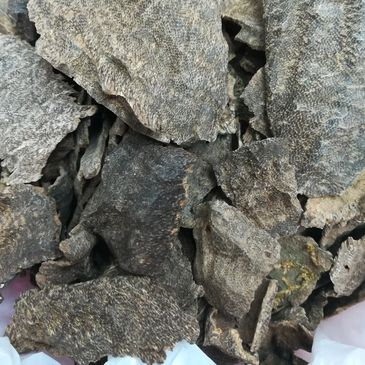 Agarwood Hindi chips, its also from India. Its giving good smell with burning time. And its smoke mo
