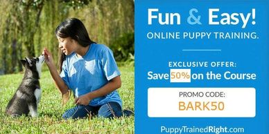Online Puppy Training www.puppytrainedright.com