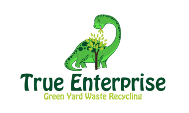 TRUE ENTERPRISE LLC