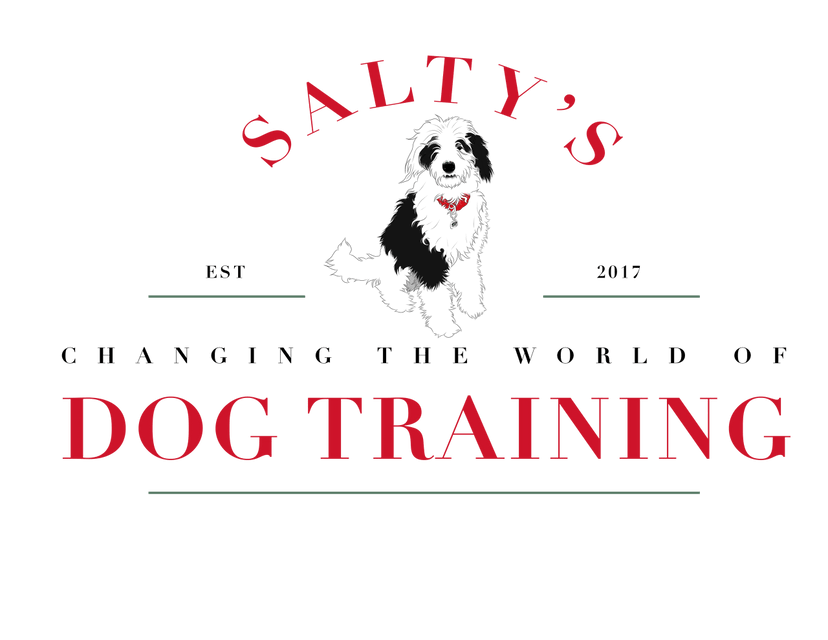 Salty's Dog Training - Grand Rapids