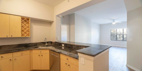 Downtown Madison at St Pete I $395K Remarkable Court yard. Two bedroom two bath ensuite. Upgrades!